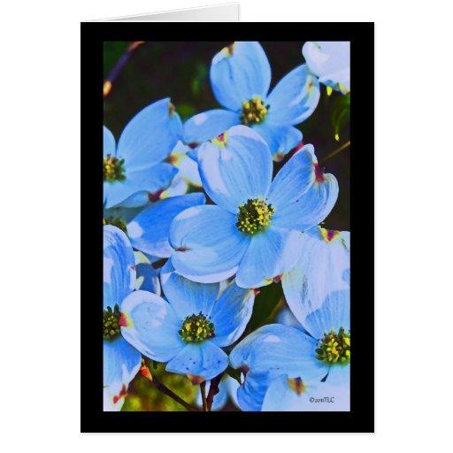 Dogwood azul Notecard Tarjeton