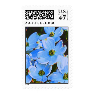 Dogwood azul sello postal