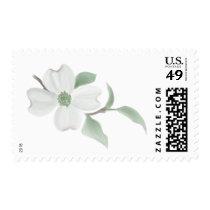 Dogwood Bloom Postage Stamps