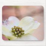 Dogwood Blossom Mouse Pad