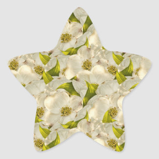 Dogwood Blossom Photograph Background Star Sticker