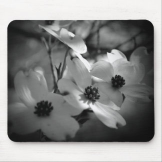 Dogwood Blossoms Bk-Wh-V Mouse Pad
