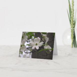 Dogwood (Cornus florida) card