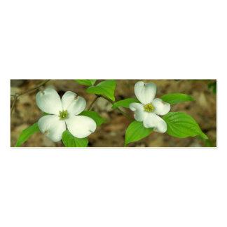 Dogwood de la primavera tarjetas de visita mini