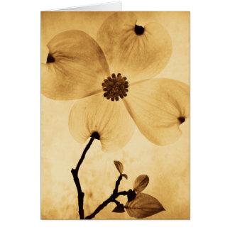 Dogwood Flower - MW1404 Card