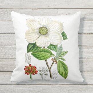 Dogwood Flower Outdoor Throw Pillow 16x16