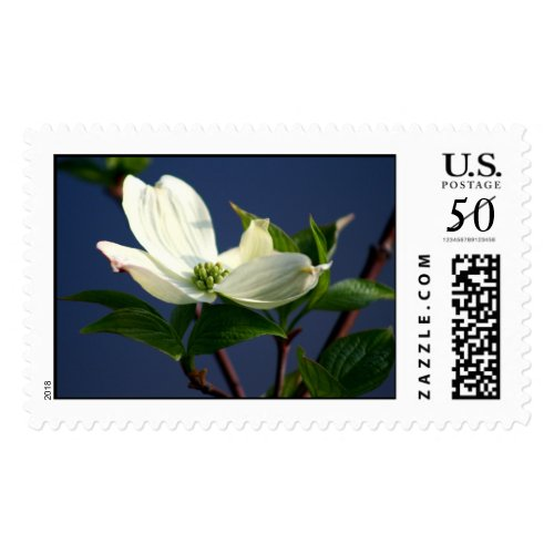 Dogwood Flower Postage