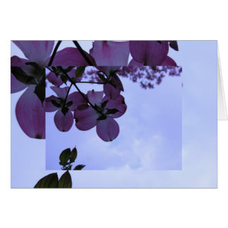 Dogwood Flowers in Pink Card