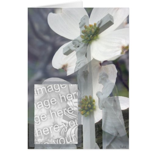 Dogwood Greeting Cards