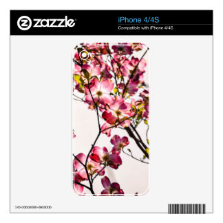 Dogwood in Bloom Skin For iPhone 4S