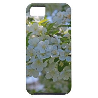 Dogwood iPhone SE/5/5s Case