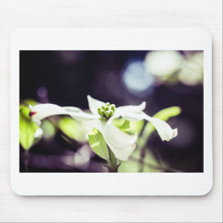 Dogwood Kind of Day Mouse Pad