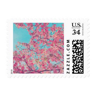 Dogwood Pink Flowers Blue Sky Nature Art + Color Postage