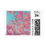 Dogwood Pink Flowers Blue Sky Nature Art + Color Stamp