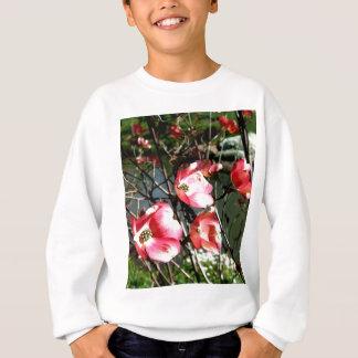 Dogwood Sweatshirt
