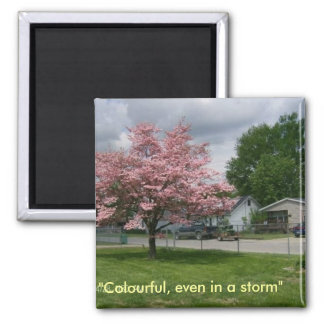 Dogwood Tree and storm 2 Inch Square Magnet