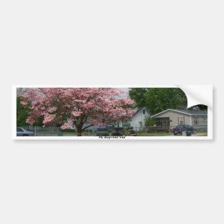 Dogwood Tree and storm Bumper Sticker