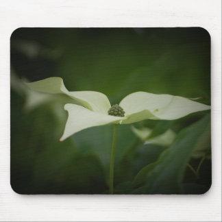 Dogwood Tree Flower Mousepad