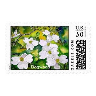 dogwood_tree_flowers, Dogwood Postage