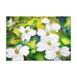 dogwood tree flowers gallery wrap canvas