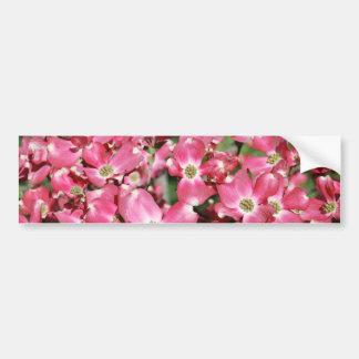Dogwood Tree in Bloom Bumper Sticker