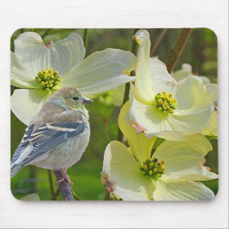 """""""Dogwood Visitor"""" Finch Songbird - Mouse Pad"""