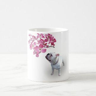 Dogwood y dogo tazas de café