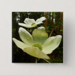 Dogwoods and Redwoods in Yosemite National Park Pinback Button