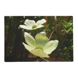 Dogwoods and Redwoods in Yosemite National Park Placemat