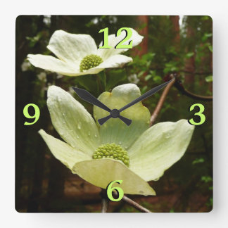Dogwoods and Redwoods in Yosemite National Park Square Wall Clock