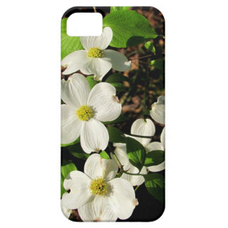 Dogwoods in Spring iPhone Case