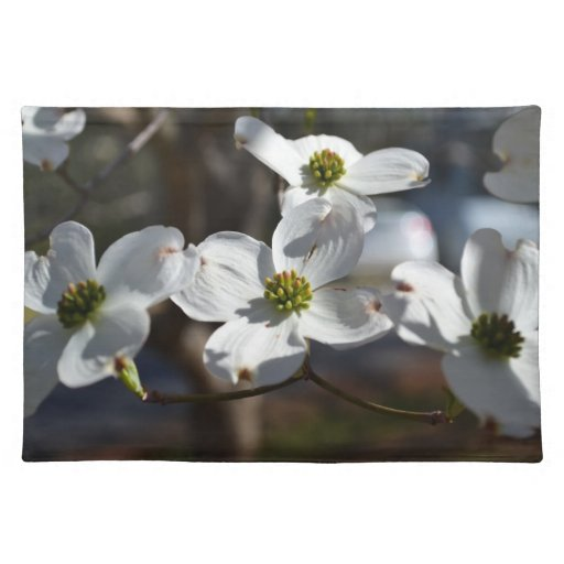 Dogwoods with Soft Light Placemat