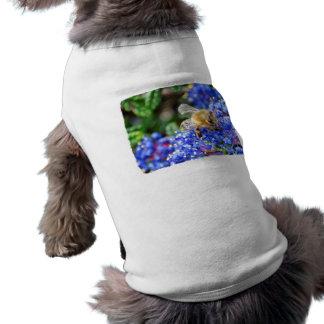 Dohr Street Bee Dog Tee Shirt
