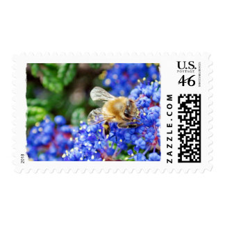 Dohr Street Bee Postage Stamps