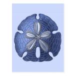 Dólar de arena azul postal