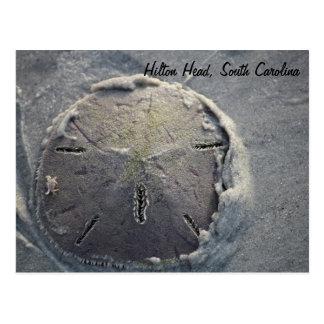 Dólar de arena con el pequeño montar a caballo del tarjeta postal