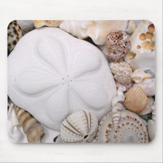 Dólar de arena de la galleta de mar tapete de raton