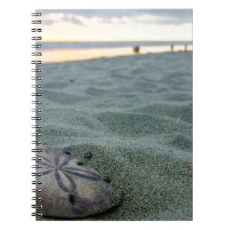 Dólar de arena en la playa libros de apuntes con espiral