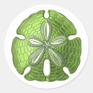 Dólar de arena verde pegatina redonda