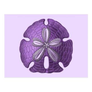 Dólar de arena violeta tarjeta postal
