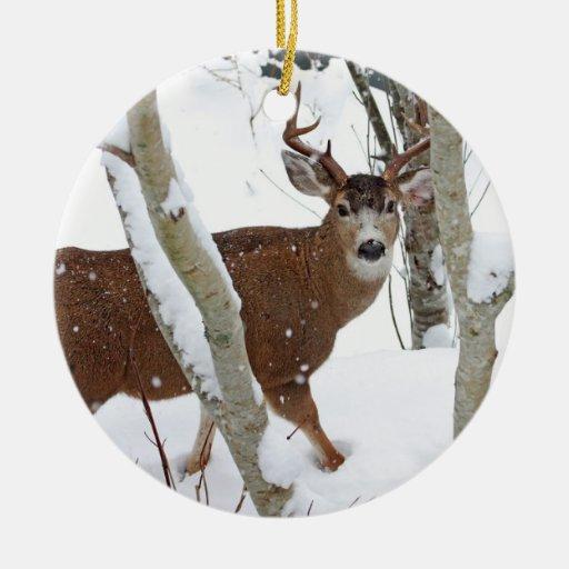 Dólar de los ciervos en nieve en invierno adorno redondo de cerámica
