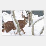 Dólar de los ciervos en nieve en invierno pegatina rectangular