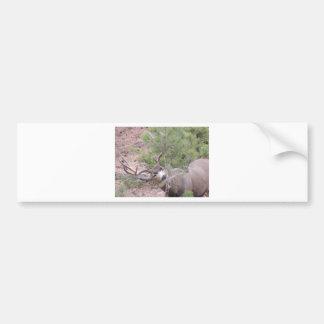 Dólar del ciervo mula pegatina de parachoque