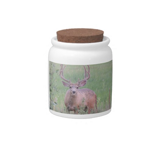 Dólar del ciervo mula jarra para caramelo