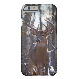 Dólar dominante funda barely there iPhone 6