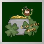 Dólar irlandés poster