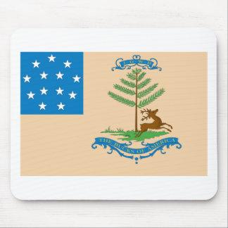 Dólares de la bandera de América Mousepads