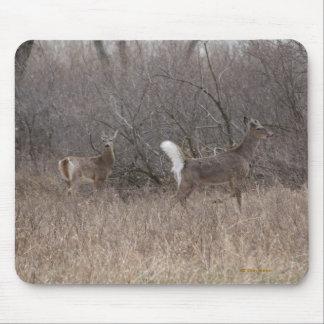 Dólares de la primavera de los ciervos de la Blanc Tapete De Ratón