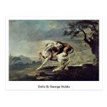 Dolla By George Stubbs Postcard