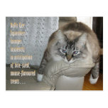 Dolly Gee Squeakers (TM) Postcard 1